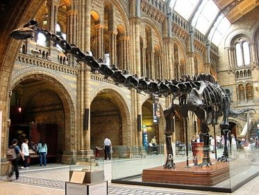 Southbank Center To Museum Of Natural History London